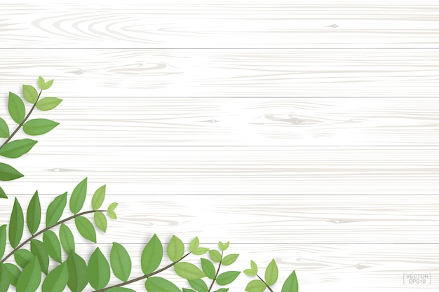 Wood texture with green leaves.