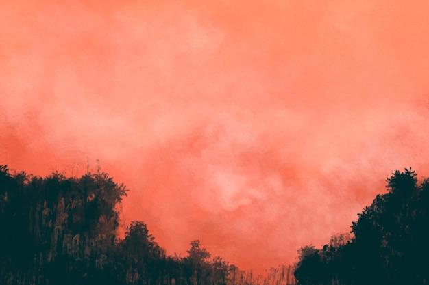 日没時の樹木が茂った風景