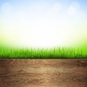 Wooden background with grass border, with gradient mesh