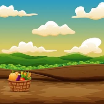 Wooden basket with freshly harvested fruits and vegetables