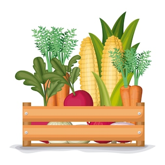 Wooden box with carrots onions beets and corn