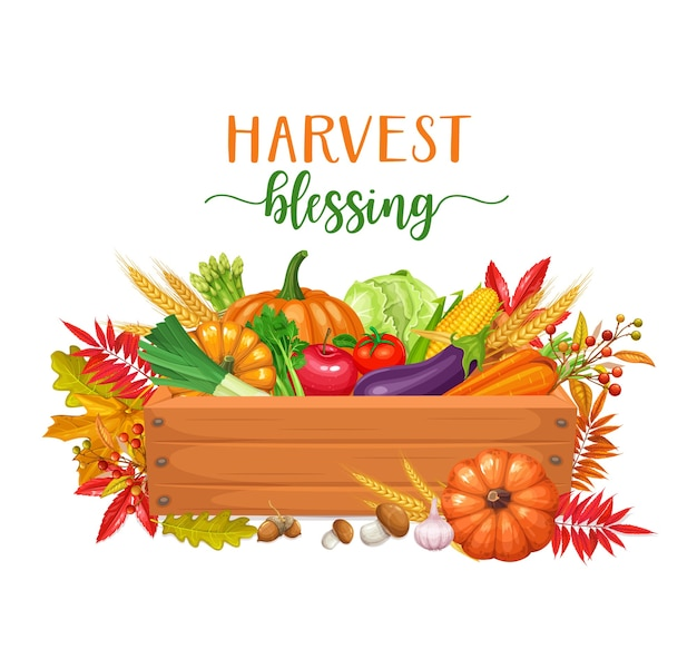 Wooden box with vegetables, autumn harvest. seasonal fall illustration with autumn foliage of maple, cabbage, corn and pumpkin.