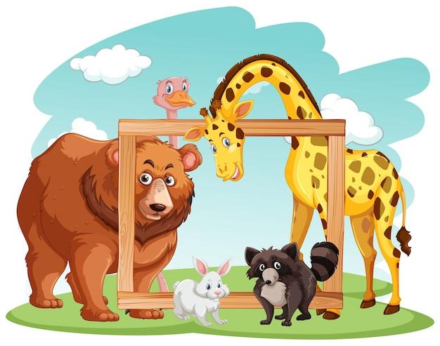 多くの動物がいる木製のフレーム