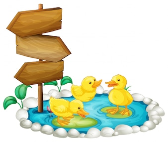 Wooden sign and ducks in the pond