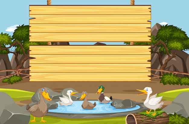 Wooden sign template with many ducks in the pond
