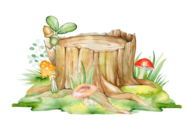 A wooden stump on a green lawn, mushrooms of different colors, and acorns.