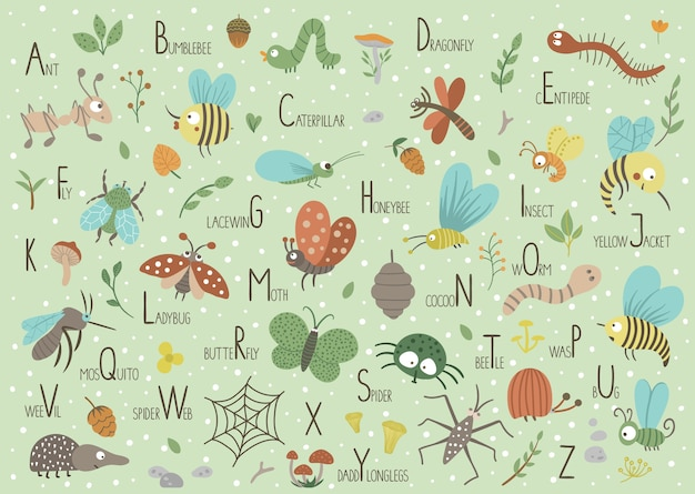 Woodland alphabet for children. cute flat abc with forest insects on green background.