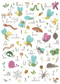 Woodland alphabet for children. cute flat abc with forest insects.