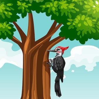 나무에 딱따구리