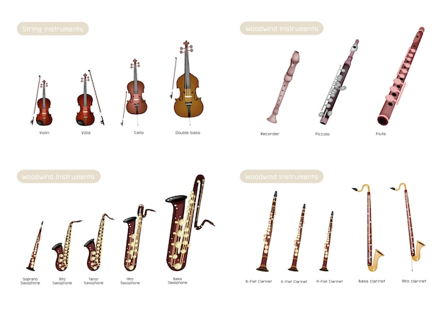 Woodwind instrument and instrument strings on white background set