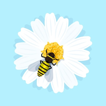 Working honey bee is sitting on the flower and collecting nectar. flat style illustration