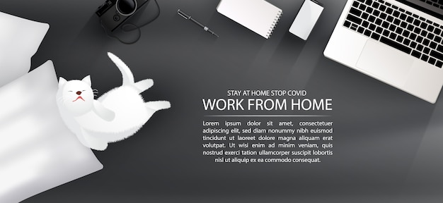 Workspace for social distancing, work from home with lovely pet concept infographic