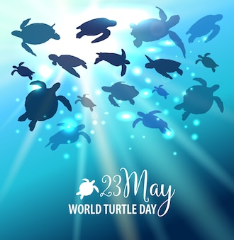World Turtle Day 23 May background