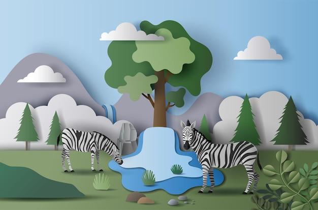 世界水の日、水を節約する、野生のシマウマのカップルの風景、紙のイラスト、紙。 Premiumベクター