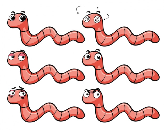 Worms with different facial expressions