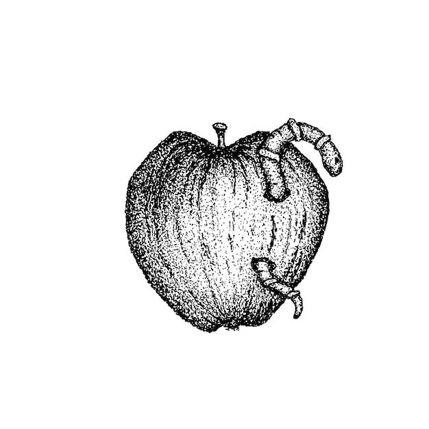 Wormy apple dotwork vector. handdrawn sketch illustration of tattoo.