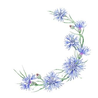 A wreath of cornflowers. delicately blooming cornflower. cornflower blue.