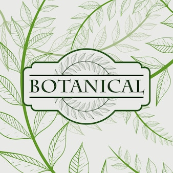 Wreath design over white background vector illustration