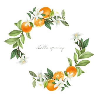 Wreath of hand drawn blooming mandarin tree branches, mandarin flowers and mandarins