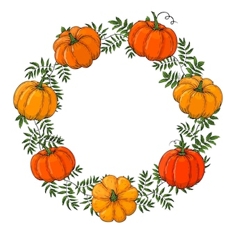 Wreath is made from color pumpkins. hand draw autumn frame. template for your design. form for text. for packaging, advertisements.  illustration.