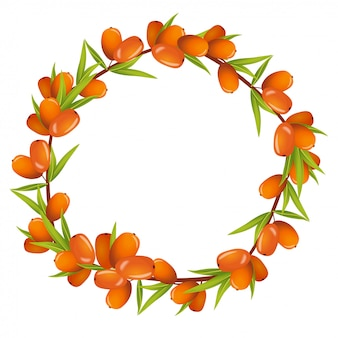 Wreath of sea buckthorn berries with place for text illustration