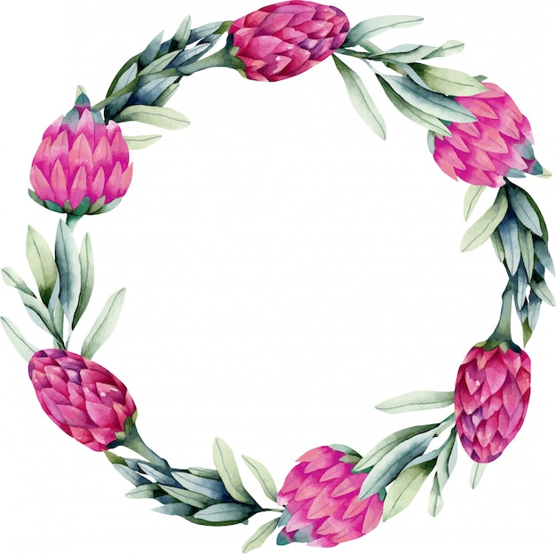 Wreath with watercolor pink protea flower and green branches
