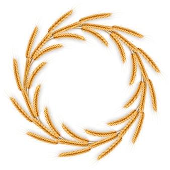 Венок с колосья пшеницы. рамка из колосков.