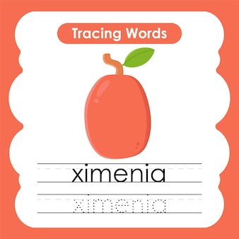 Writing practice fruit and vegetable words alphabet tracing with x ximenia