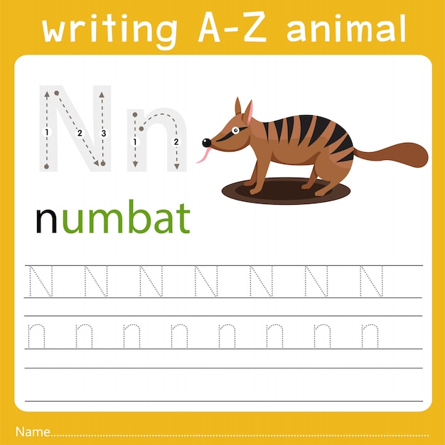 Writing a-z animal n