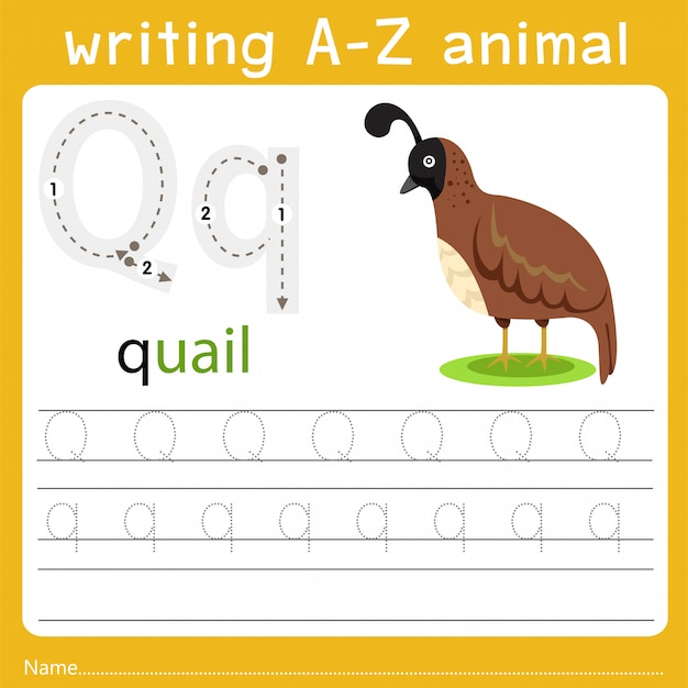 Writing a-z animal q