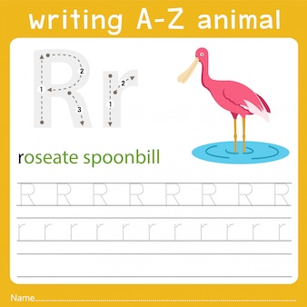 Writing a-z animal r