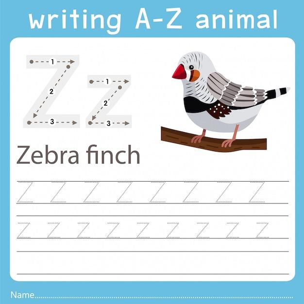 Writing a-z animal of zebra finch