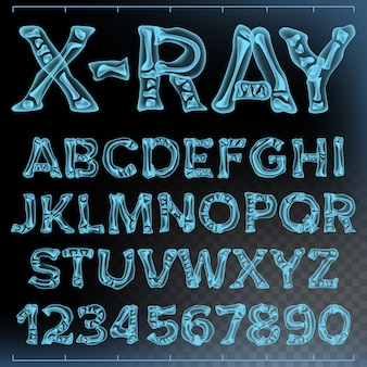 X-ray font vector