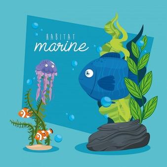 Xxx와 해양 생물, 바다 세계 거주자, 귀여운 수중 생물, 열대 해저 동물 군