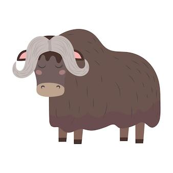 Yak wild bull or musk ox cute vector childish illustration in flat style