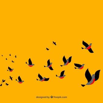 飛ぶ鳥と黄色の背景