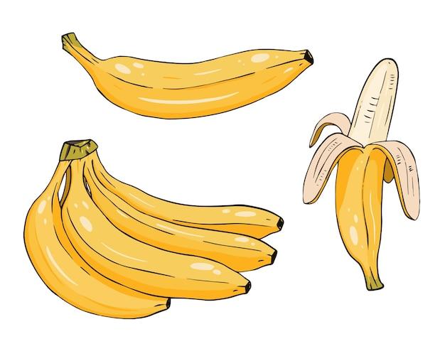 Набор желтых бананов. мультяшный одиночный и очищенный банан. линии каракули