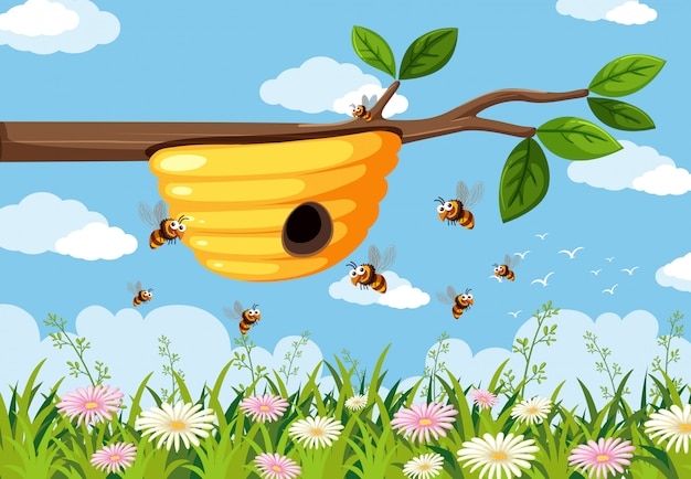 Yellow beehive on branch