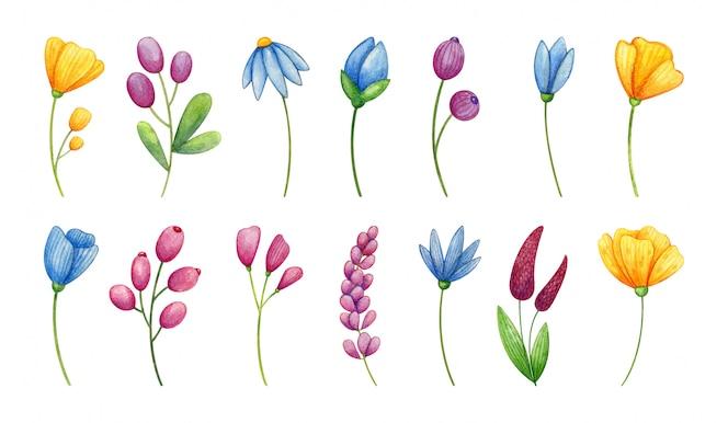 黄色、青、紫のワイルドフラワーセット手描きの水彩画。シンプルな花のコレクション。
