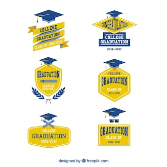 Yellow and blue logos for the university