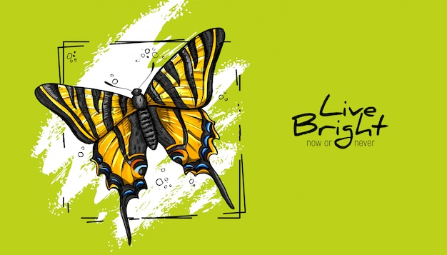 黄色の蝶。