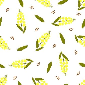 노란색 카놀라 꽃입니다. 유채 식물 완벽 한 패턴입니다.