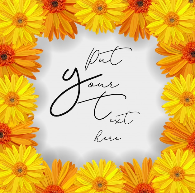 Yellow cosmos flower frame for text vector illustration