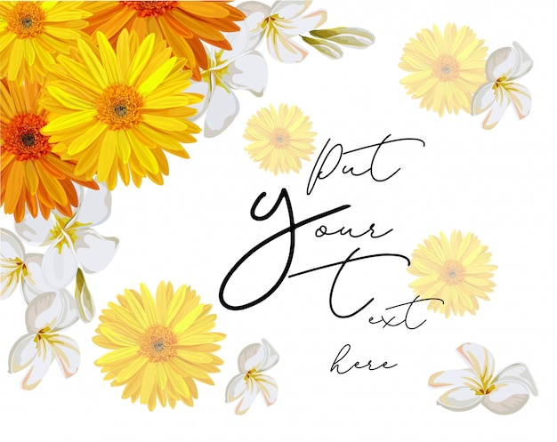 Yellow cosmos and plumeria flower frame for text vector illustration