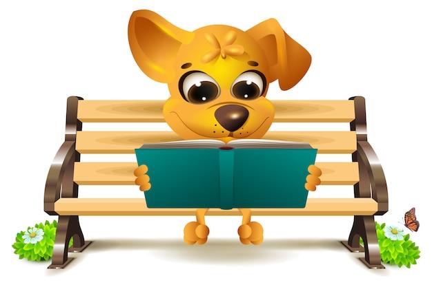 Желтая собака сидит на скамейке и читает книгу