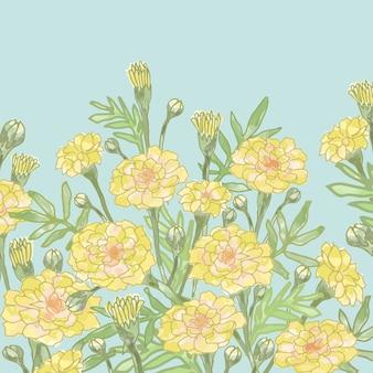 庭の黄色い花と緑の葉。