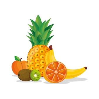 黄色い果物