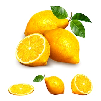 Yellow lemon fruit in different shape, sliced, section and whole elements in  illustration