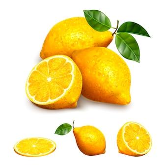 그림에서 다른 모양, 슬라이스, 섹션 및 전체 요소에 노란색 레몬 과일