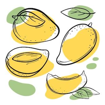 黄色いマンゴーおいしいトロピカルフルーツ全体と葉のスライス